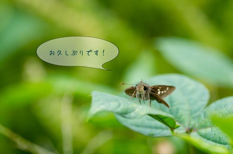 編集_10090001