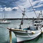 広角 de 漁港